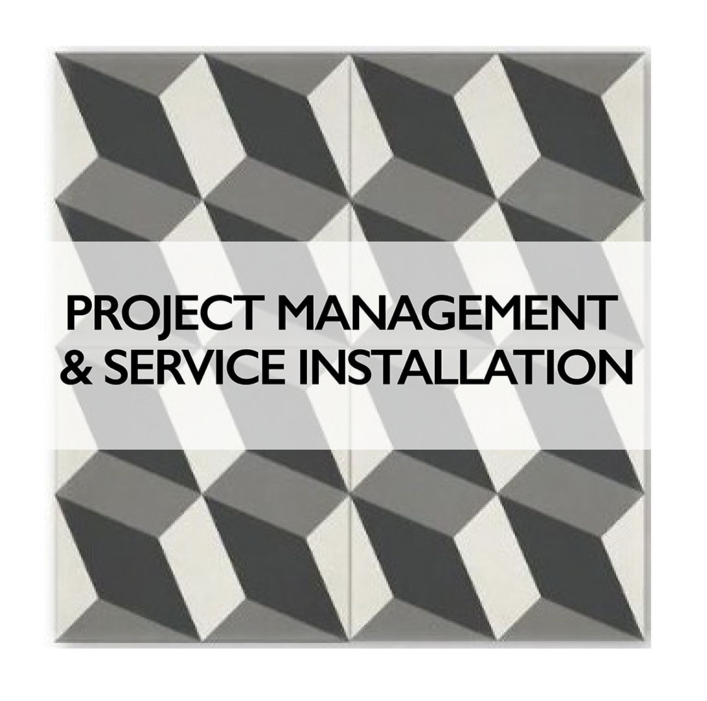 Project Management and Service Installation